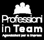 Professioni in Team